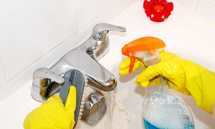Cleaning service for house in chicago river grove for Bathroom cleaning companies