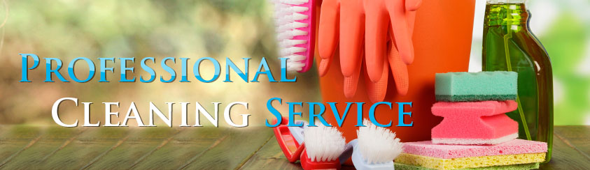 cleaning service for house in chicago river grove